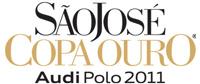 logoCO2011