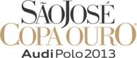 logoCO2013